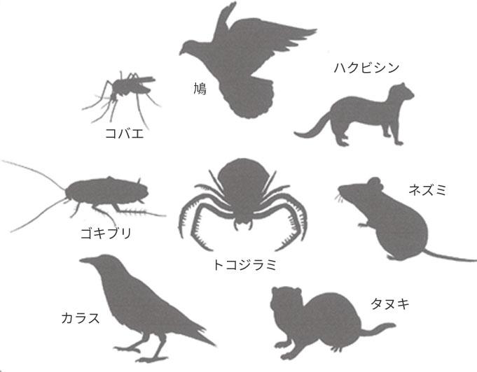 害虫・害獣・害鳥の駆除